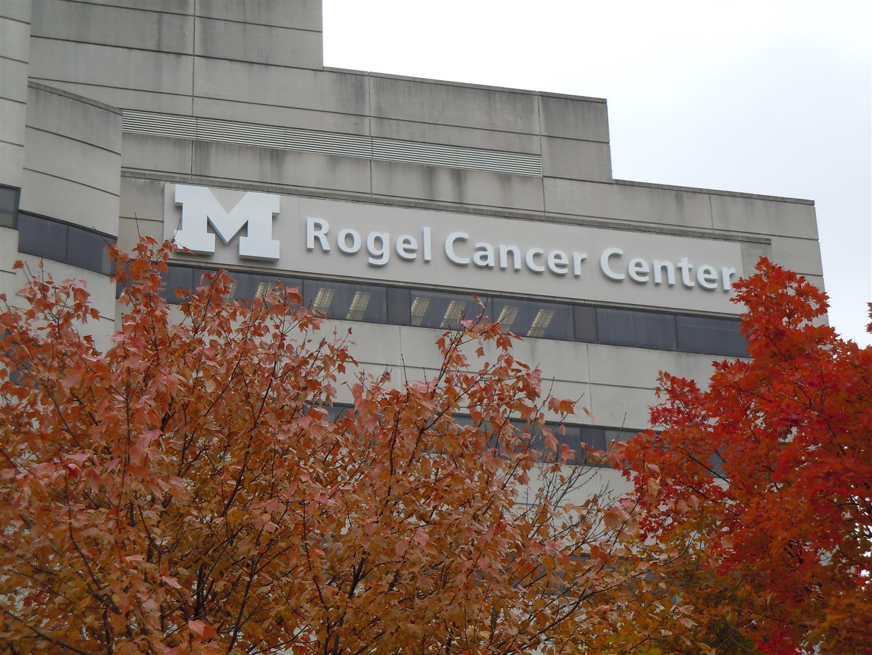 Cancer Center Iconic Signage - IDS